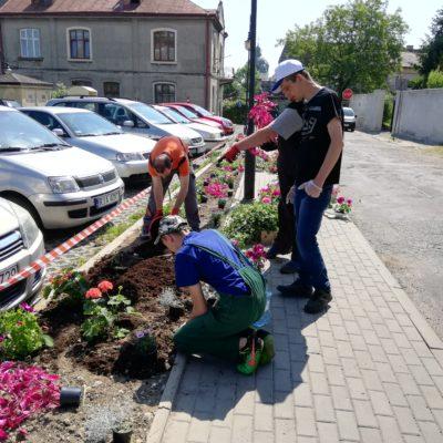sadzimy kwiaty